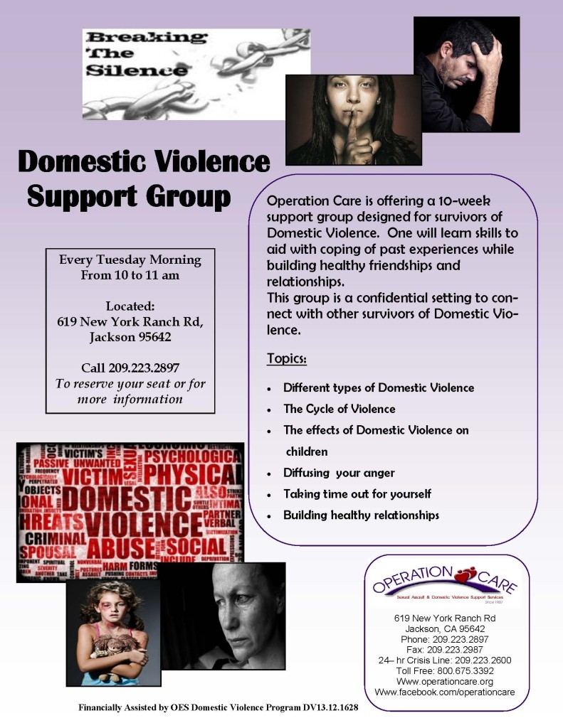 DV Support Group12-27-13